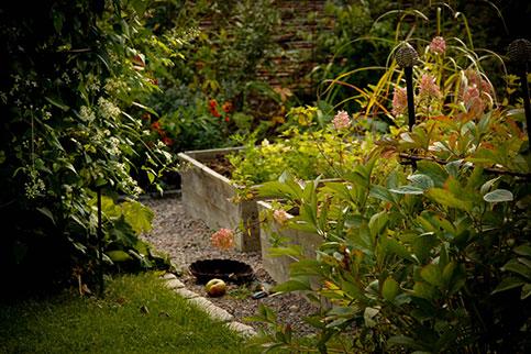 Rådgivning trädgård